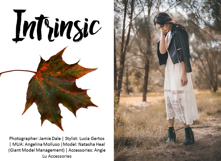 Intrinsic-by-Jamie-Dale-Photography-on-Whim-Online-Magazine-1-1